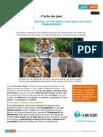 Tigre Lion on Les Adore Pourtant Eux Aussi Disparaissent 59922