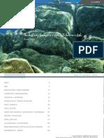 SCUBA_2019_EN-ES_72dpi.pdf
