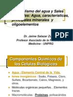 Metabolismo Del Agua y Sales Minerales.jaimE SALAZAR Z