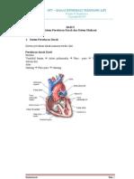 Sistem Peredaran Darah Dan Sistem Ekskresi
