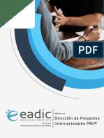 Master Direccion Proyectos Internacionales