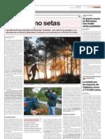 Article publicat a El Periódico sobre la temporada de bolets