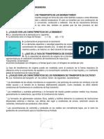 Cuestionario3bio Chico