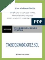 pseudogestacion en caninos.docx
