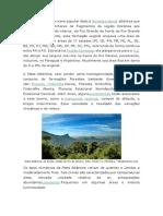 Mata Atlântica e Pampas.docx Daylla
