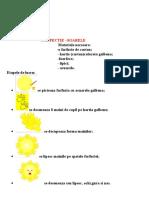 aplicatie_soarele.doc