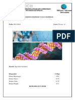 Fosfoesfingolipidos y Glucolipidos