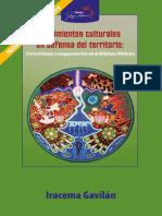 Gavilán_I-Movimientos culturales en defensa del territorio_Extractivismo y megaproyectos en ALTIPLANO WIRIKUTA