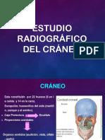 Craneo Expo Telesup