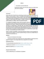 ABP Búsqueda Incidente y de Tipo Real.