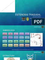 Auriculoterapia de Lipszyc