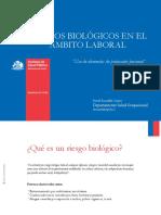 Nota Tecnica N 014 Riesgos Biologicos en El Ambito Laboral Uso de Elementos de Proteccion Personal