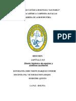 RESUMEN CAPITULO XVI.docx