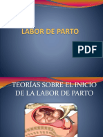 4.-TEORIAS-INICIO-PARTO-.pptx