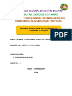 Informe de Extraccion de Colorante de Palillo Talia