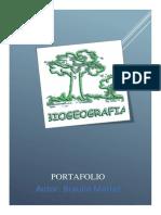 Portafolio Braulio
