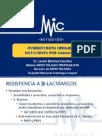 Antibioterapia Dirigida en Infecciones Por Enteroccocus