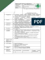 SOP Koordinasi Pelaksanaan Program