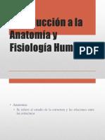 introduccinalaanatomayfisiologahumana-120109205354-phpapp01