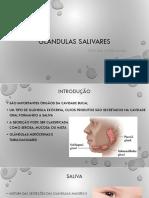 2 Glândulas salivares