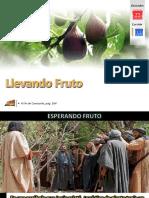 Lección 12 - Llevando Fruto