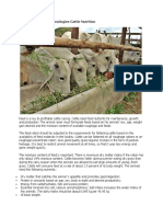 Cattle Production Technologies-Cattle Nutrition