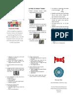 Leaflet Phbs Lisia