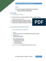 INFORME-CAMINOS-I.docx