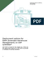 Deloitte_Deployment options EWM.pdf