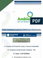 PRI - CMR - Curtiembres - Aguas Residualess