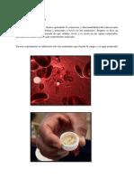 Informe 1 de Biologia