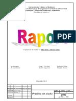 dokumen.tips_114147816-ana-dare-de-seama-la-practica.pdf