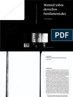 Manualsobrederechosfundamentales_1_