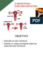 CICLO MENSTRUAL1