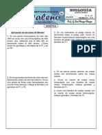 31.Aplicacion Leyes Mendel