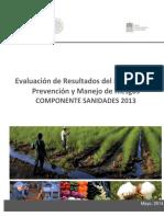 Informe_Evaluacion_Estatal_SLP_SANIDADES_Moscas_de_la_fruta_5.10.pdf