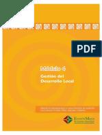 Gestion Del Desarrollo Local