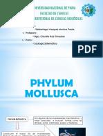 Zoologia Sistematica Phylum Mollusca Original 1