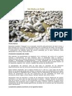 otro ser.pdf