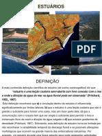 Aula_13_Estuarios.pdf