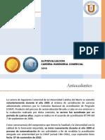 Informe auto-evaluación consolidado (Considera alumnos, profesores, empleadores, ex-alumnos, personal apoyo docencia)