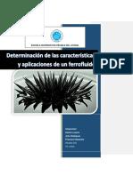 Creación de Un Ferrofluido
