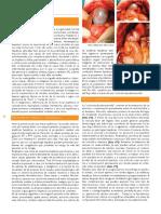 Colecistoduodenostomia.pdf
