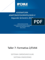 TALLER 7-Sistema Vascular Endocrino