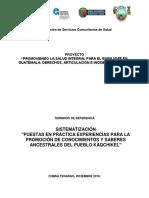 TDR Consultoría Sistematización de Prácticas VF 17.12.18