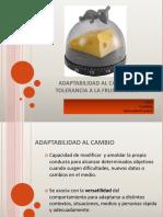CAMBIO  Y  FUSTRACION.pdf