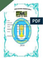 UNIVERSIDAD NACIONAL CARATULA.docx