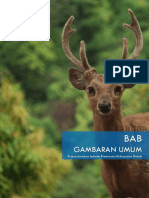 BAB IV GAMBARAN UMUM.pdf