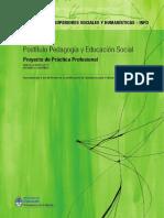 Modulo Proy. Practica Profesional Cappelletti
