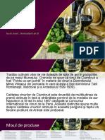 Proiect Contabilitate Suciu Aurel, Horticultură Grupa III.(1)
